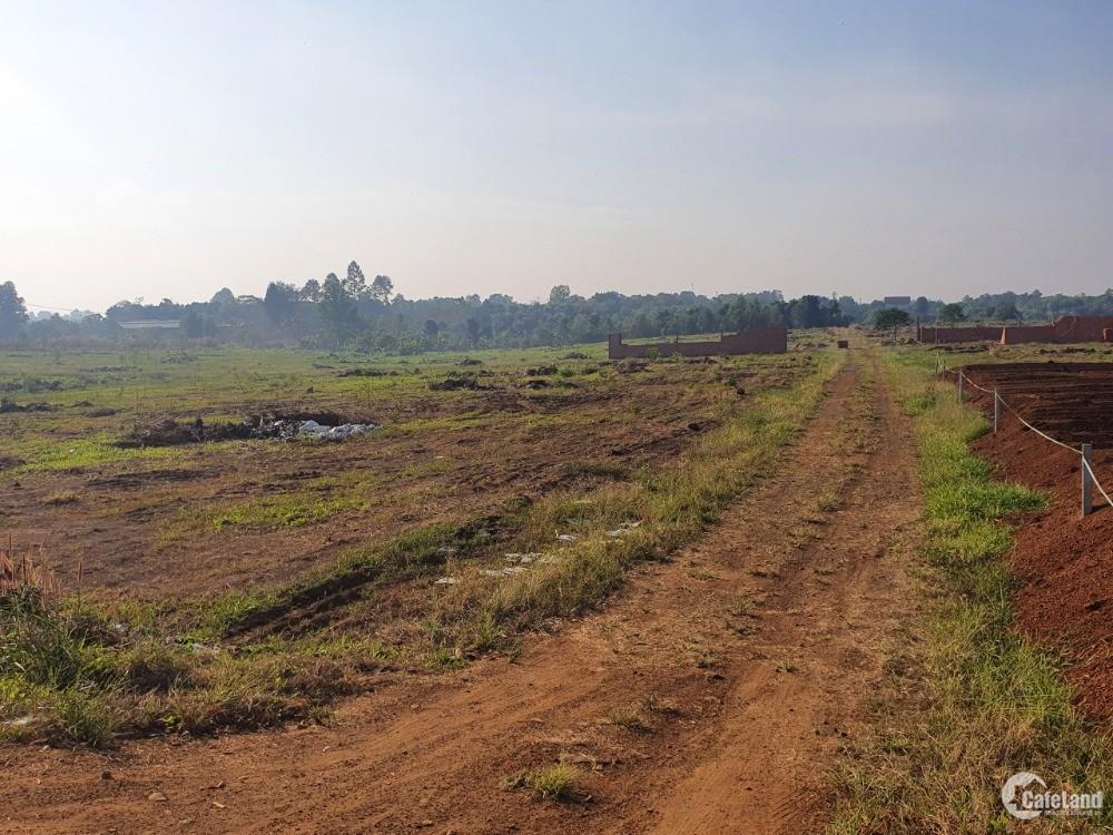 Bán đất sào tại Trảng Bom, đường đi sân bay quốc tế Long Thành giá rẻ