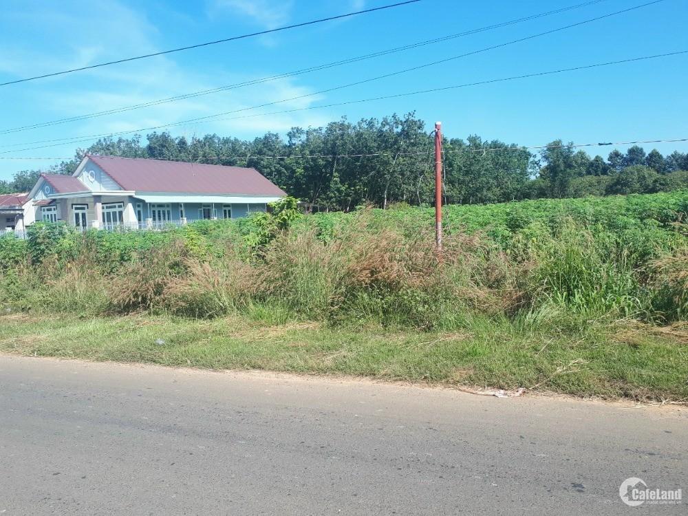 Đất mặt tiền đường lớn 32m thích hợp làm nhà vườn