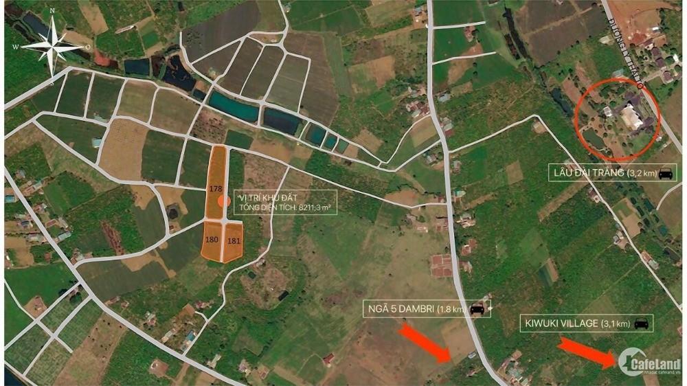 Đất nền dự án view đồi chè Ô Long