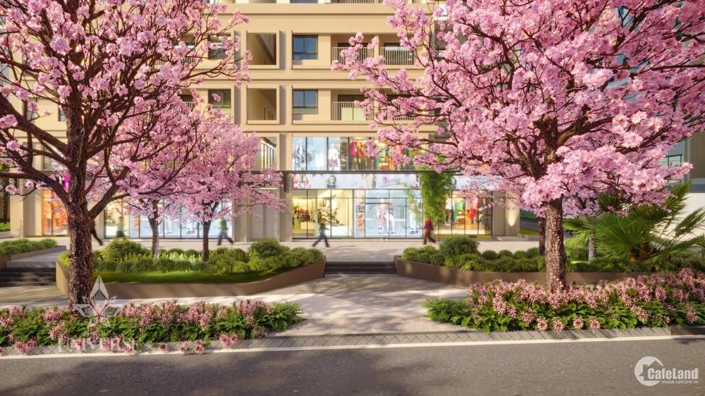 Nhà chung cư Biên Hoà, đường QL1A, 2 phòng ngủ, 74 m2, 2 PN giá 2.3 tỷ góp 3năm