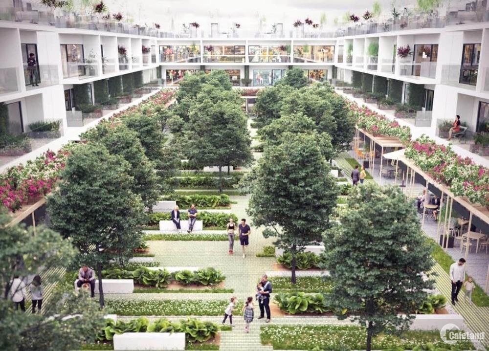 Nhà phố biển  Xuất Nội Bộ - Nhiều chính sách hấp dẫn của dự án Thanh Long Bay