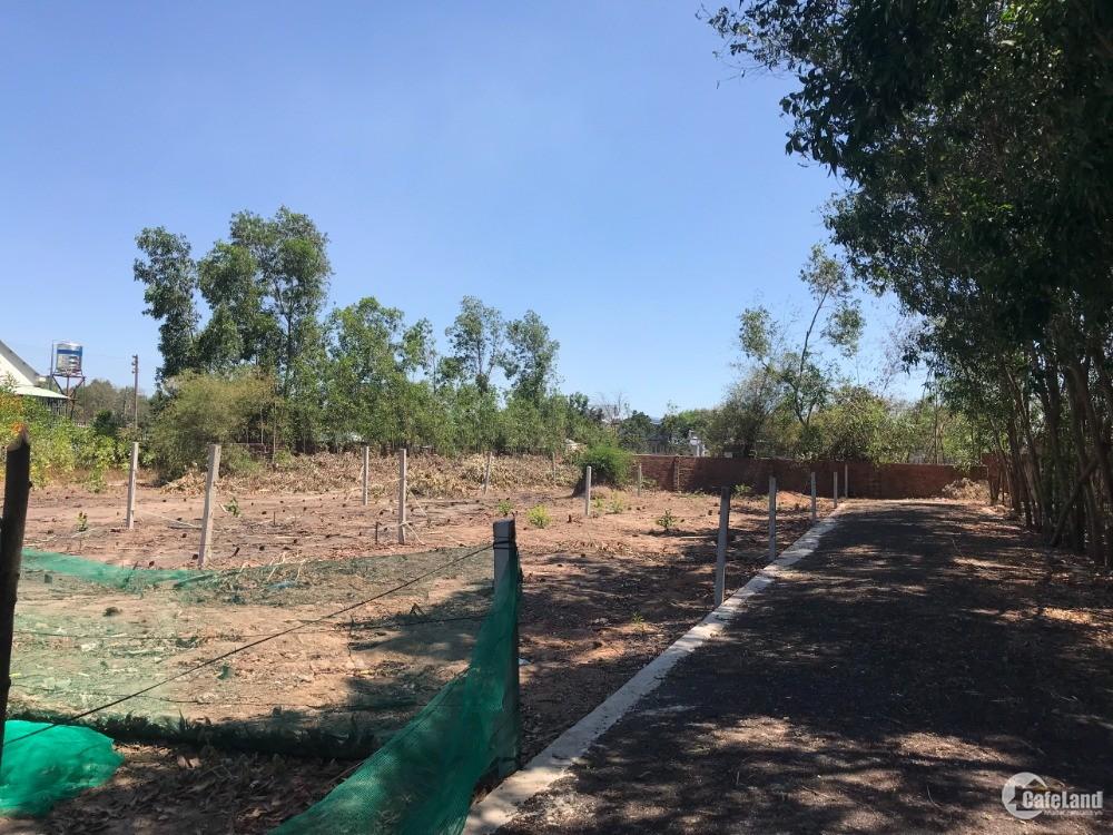 Cần bán 2 lô đất tại Long Phước, sổ hồng công chứng ngay