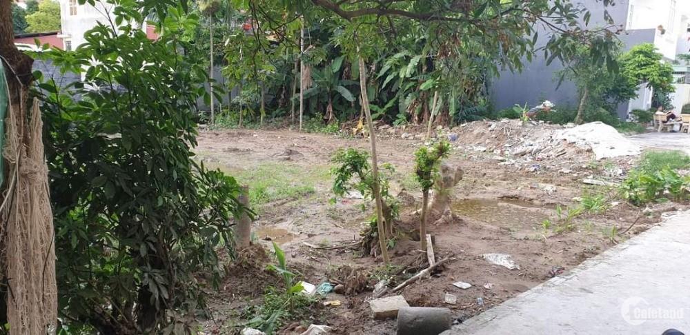 Bán lô đất hiếm chung cư Cách Hạ,  đối diện trường tiểu học NAm Sơn