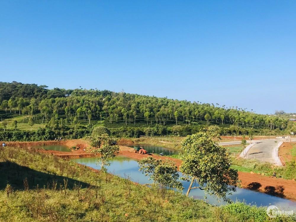 Bán đất nghĩ dưỡng tại TP Bảo Lộc, sát kdl đồi chè Tam Châu