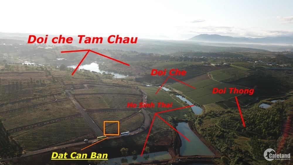 Bán đất nghỉ dưỡng Bảo Lộc, gần Hồ, Đất thổ cư có sổ hồng sẵn