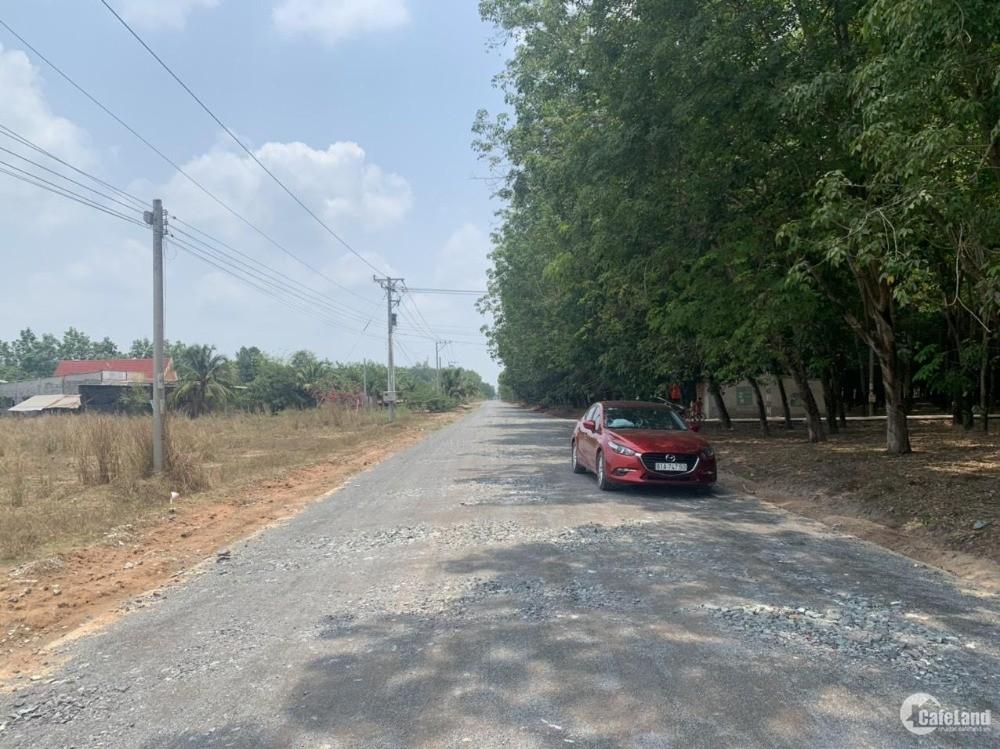 Bán đất mặt tiền đường 239 tại Chơn Thành
