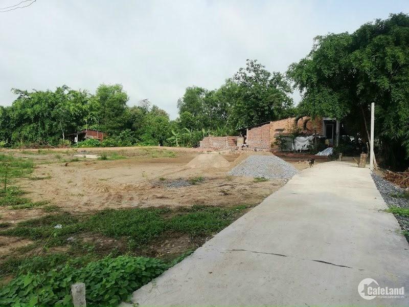 Kẹt tiền bán gấp lô đất thổ cư gần trường tiểu học Phước Trạch Gò Dầu,Tây Ninh.