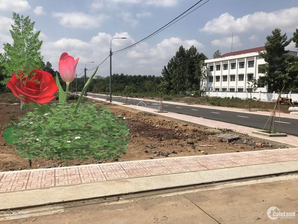 Bán Đất Sổ Riêng Sẵn, Thổ Cư 100% Tại Đường Đt 769, Gần Sân Bay Long Thành