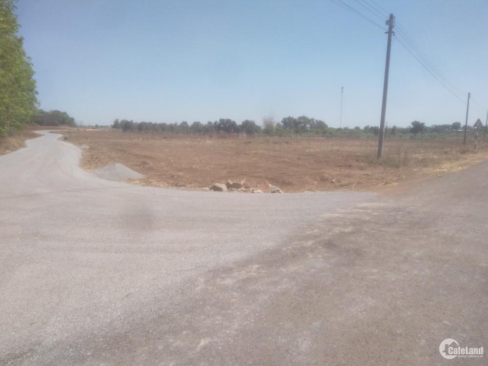 Đất sào trồng cây lâu năm có thổ cư xã Bàu Cạn