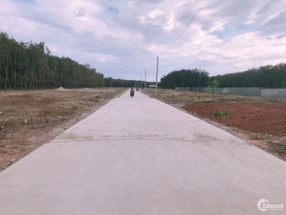 Bán gấp đất Phú Giáo, 500tr sổ sẵn thổ cư gần DT741 bao chi phí sang tên