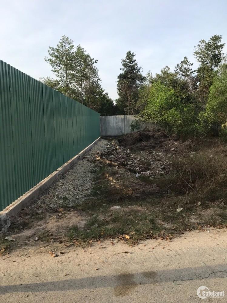 Chính chủ bán 01 lô đất gần QL51 khu phố Phước Lộc, Tân Phước, TX Phú Mỹ,