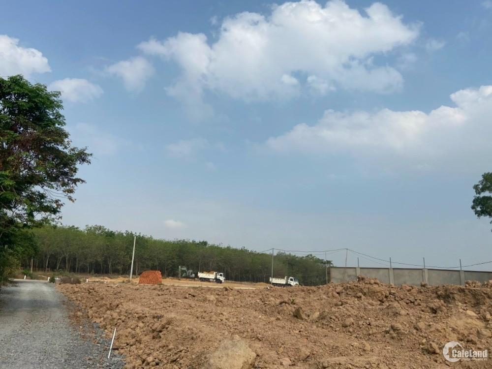 Còn mấy lô đất Phú Chánh, Bình Dương giá rẻ đầu tư rất ok 3tr- 3.4tr/ m2