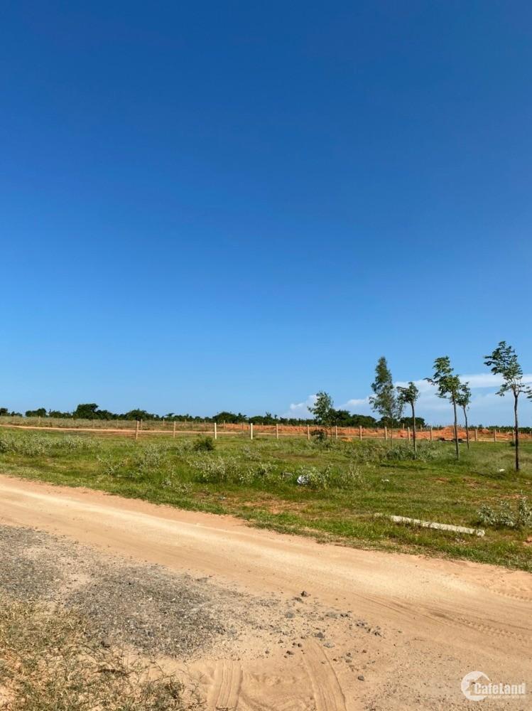 Đất nông nghiệp 2300m2 ở huyện Bắc Bình, Bình Thuận giá 276 triệu
