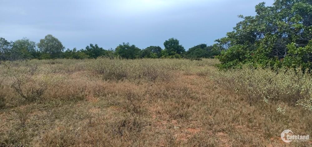 Bán 12,084m2 đất vườn bắc bình vuông đep gần liên huyện 90k/m2 Lh 0938677909