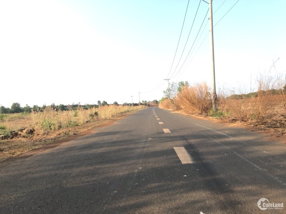 Đất sào Hưng Thịnh. Mặt tiền đường nhựa liên huyện 120 m.Gía Chính Chủ.