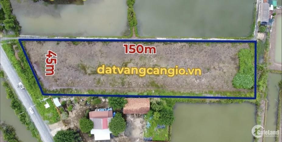 Săn đất rẻ: 6142m² ở Cần Giờ giá giảm còn 18.4 tỷ