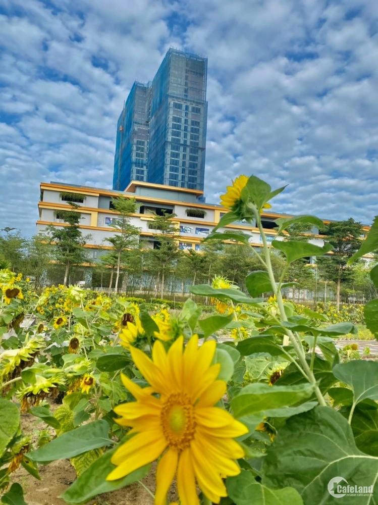 Bất động sản Đà Nẵng đang tăng giá từng ngày, cơ hội nào cho các nhà đầu tư?
