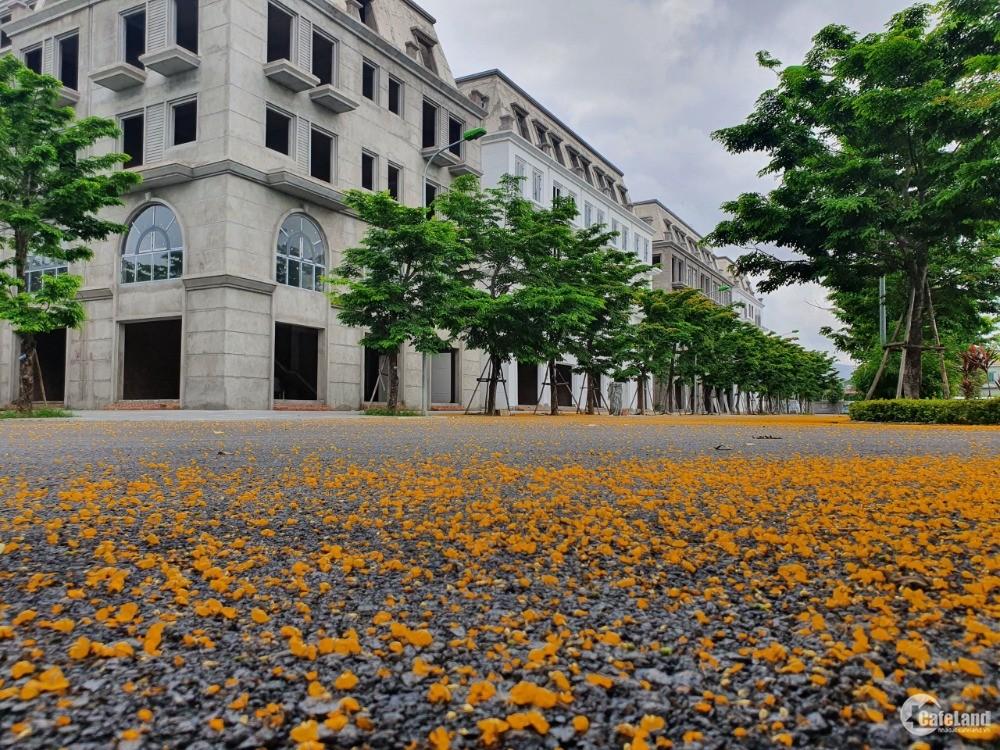 Bán Liền Kề, Biệt Thự dự án Opus One Uông Bí. Vị trí Siêu Đẹp. giá chỉ từ 2,9 tỉ