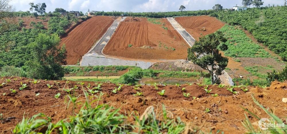 Đất Bảo Lộc view đồi săn mây giá gần 3tr/m