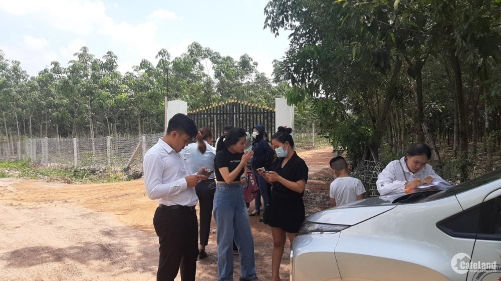 Cần bán gấp lô đất giá rẻ tại thị xã Bình Long , Bình Phước giá chỉ 295 triệu