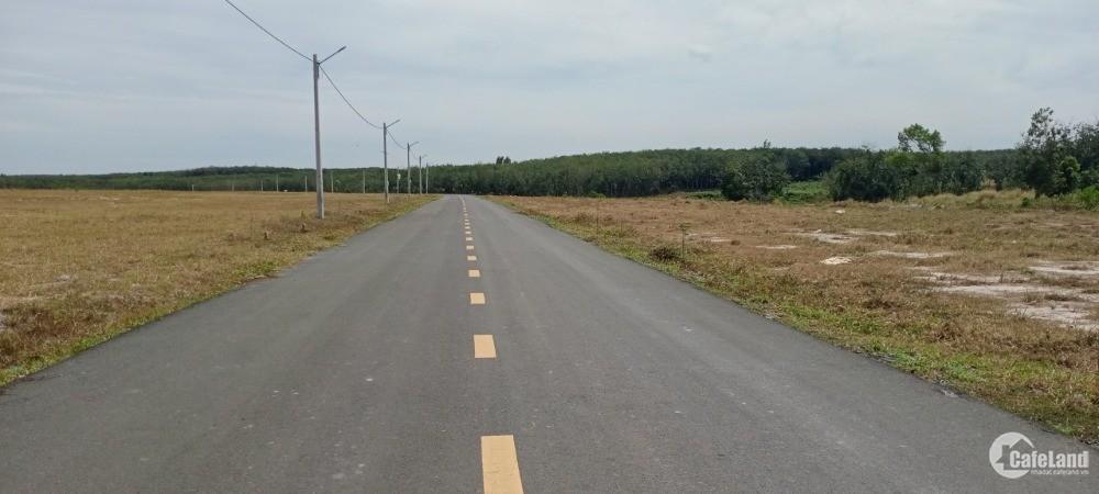 cần bán đất vườn 1120m2 SHR có thổ cư gần khu công nghiệp
