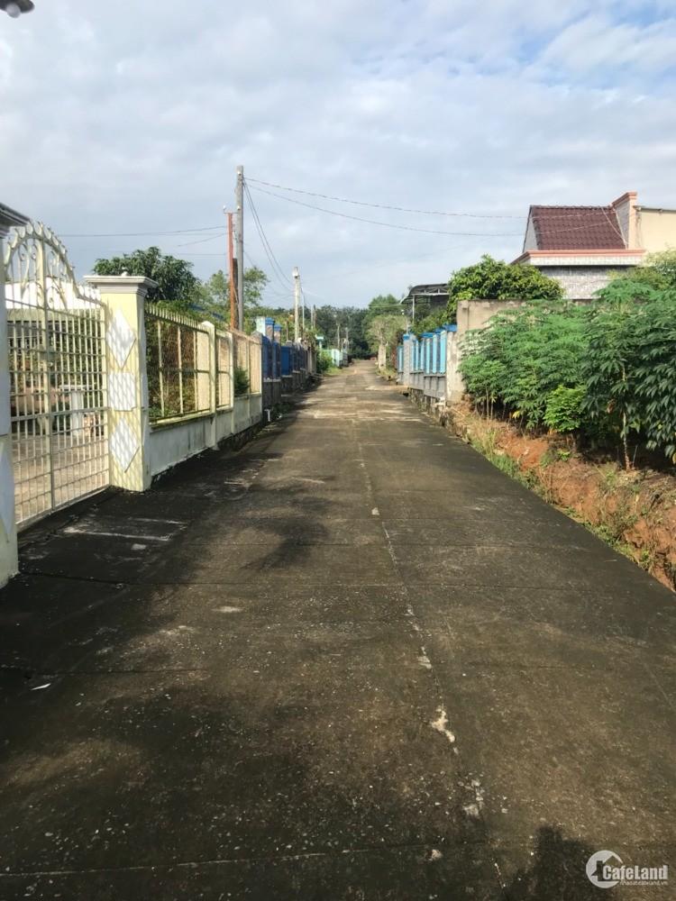 Đất khu dân cư bàn cờ Bàu Cạn mặt tiền 35m, 100m2 thổ rẻ nhất khu vực