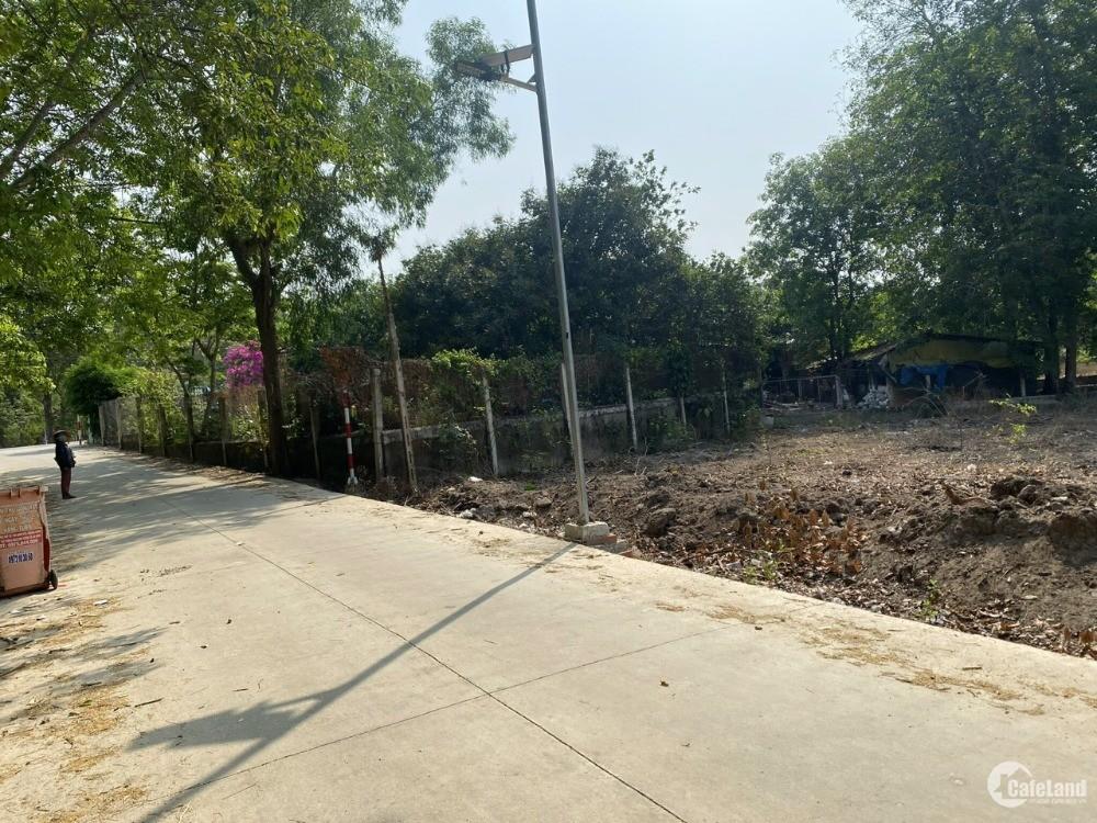 Ngân hàng thanh lý đất dân sổ sẵn gần chợ An Bình, thổ cư xây dựng tự do