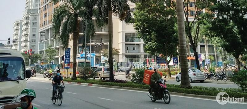 Đất Nguyễn Cơ Thạch - 157m mặt tiền 24m kinh doanh sầm uất, đã có GPXD 8 tầng
