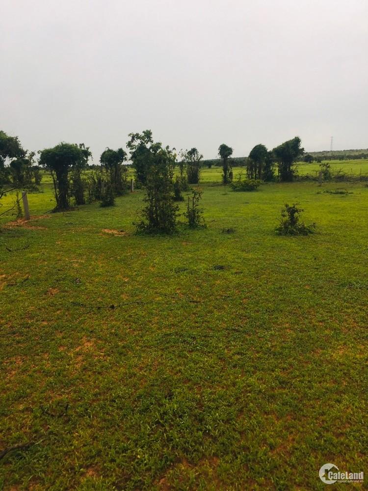 Bán lô đất vườn vị trí đẹp đa dạng diện tích giá chỉ từ 300tr