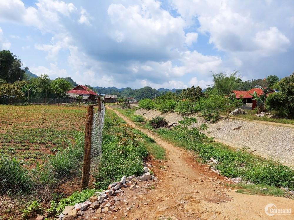 Bán Lô đất tại Bản Búa , Đông Sang - Mộc Châu  rộng 876m2 VIEW Cực đẹp , thoáng