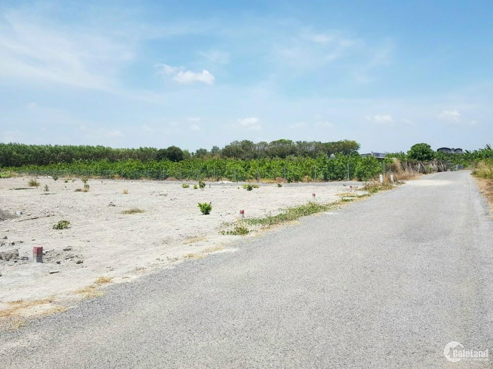 Bán đất mặt tiền đường nhựa Phước Long Thọ ,Đất Đỏ, BRVT