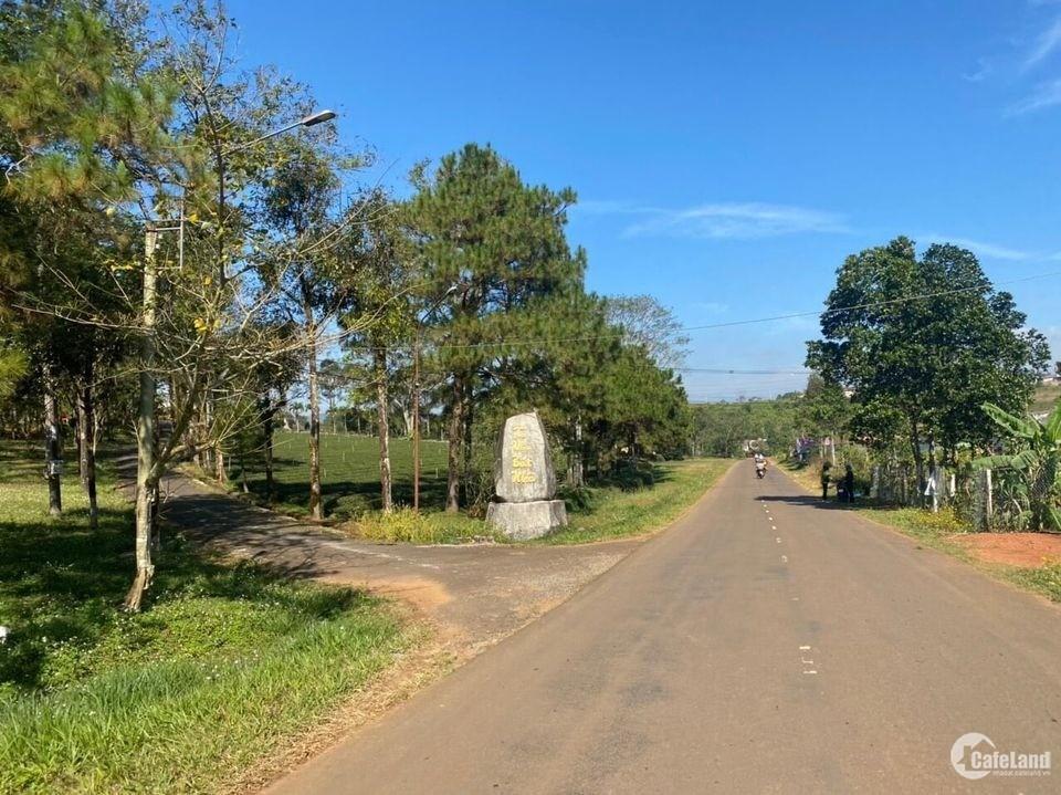 Bán đất thổ cư tại Lộc quảng-bảo lâm 150m2 giá chỉ 600tr