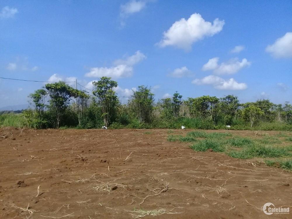 Gia đình về quê sống cần bán gấp đất giá đầu tư ngay trung tâm thành phố Bảo Lộc
