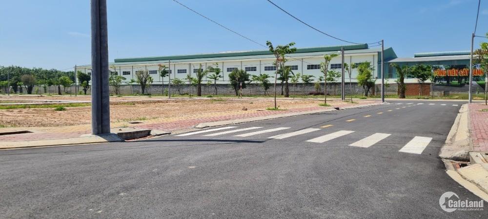 Gấp gấp đất mặt tiền QL13 ngay KCN Bàu Bàng Kế bên trường học.