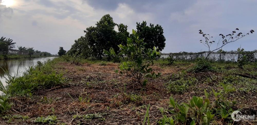 Bán lô đất gần thị xã Bình Long 1000m2 chỉ có 440 triệu
