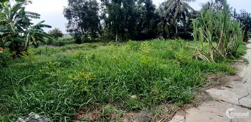 Cần bán gấp lô đất tại thị xã Bình Long, Bình Phước giá chỉ  450tr, 550tr