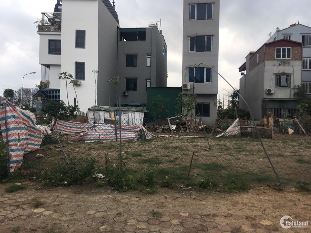 Cần bán đất mặt phố Chính Trung Trâu Quỳ, DT 113m, hướng Đông Nam, đường 15m