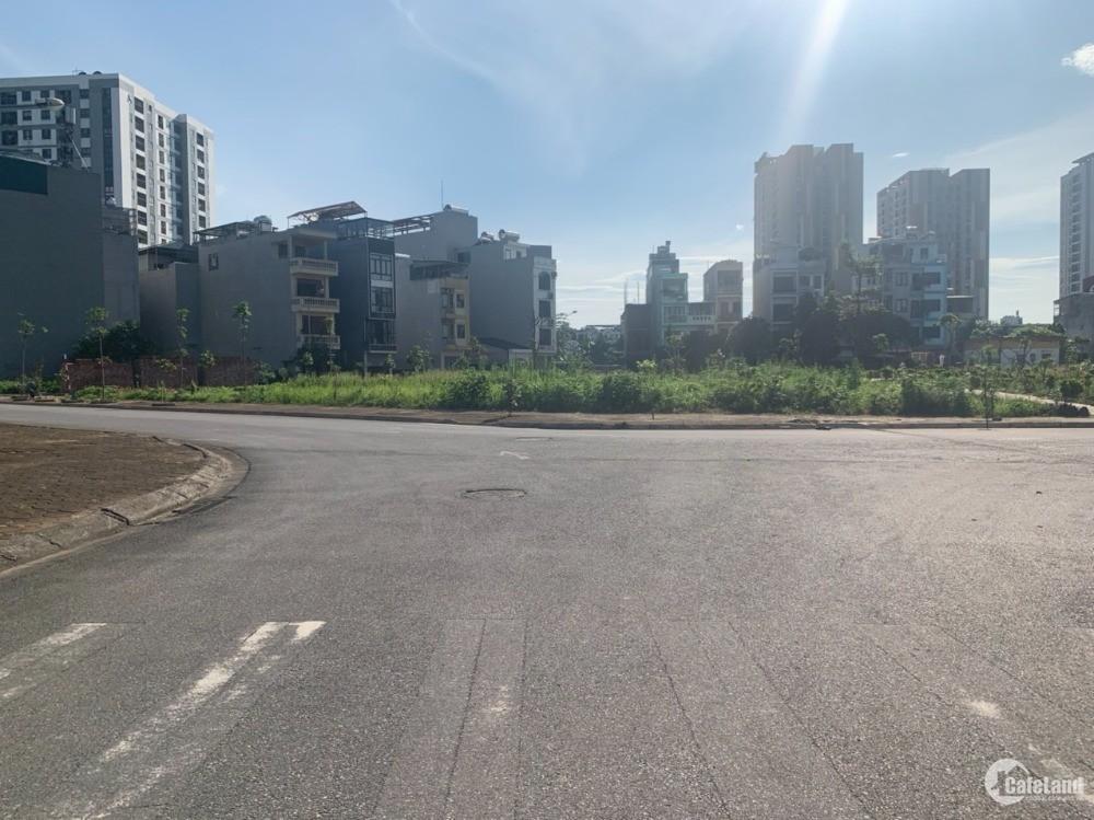 Bán đất khu 31ha dãy D1 diện tích 125m, mặt tiền 7m, đường 15m mặt phố Chính Tru