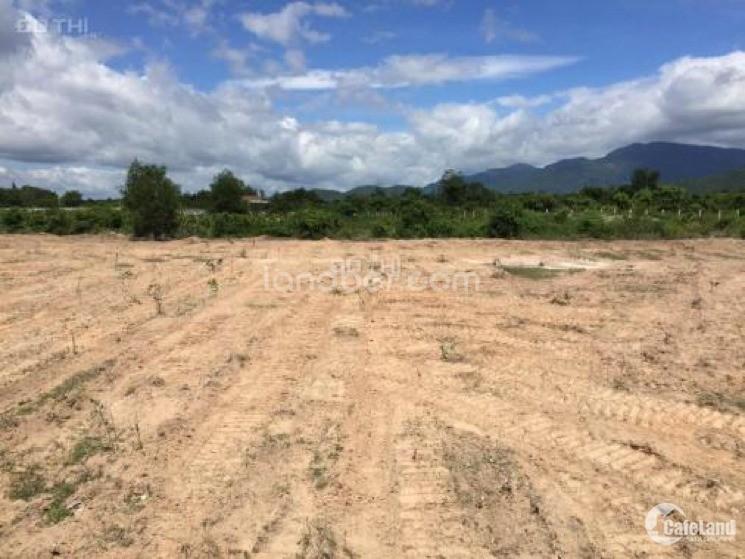 Bán gấp 10ha đất Mương Mán, Hàm Thuận Nam, Bình Thuận (mỏ cát xây dựng)
