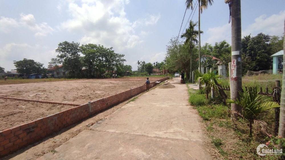 Lô đất sát chợ lệ trạch, Không lụt, khu dân cư sinh sống đông đúc
