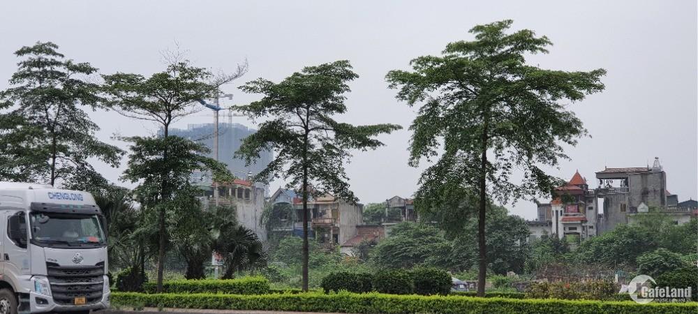 Nhượng QSD đất mặt đường Lý Sơn Long Biên 110 m2 mt 9m nhỉnh 15 tỷ