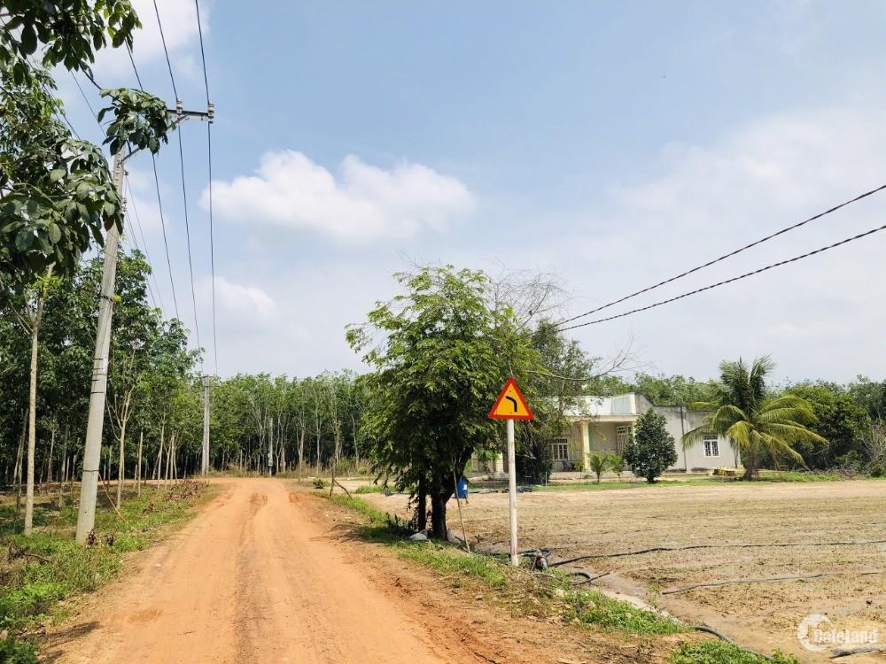Tây Ninh – Viên ngọc miền Đông Nam Bộ - Đầu tư thông minh