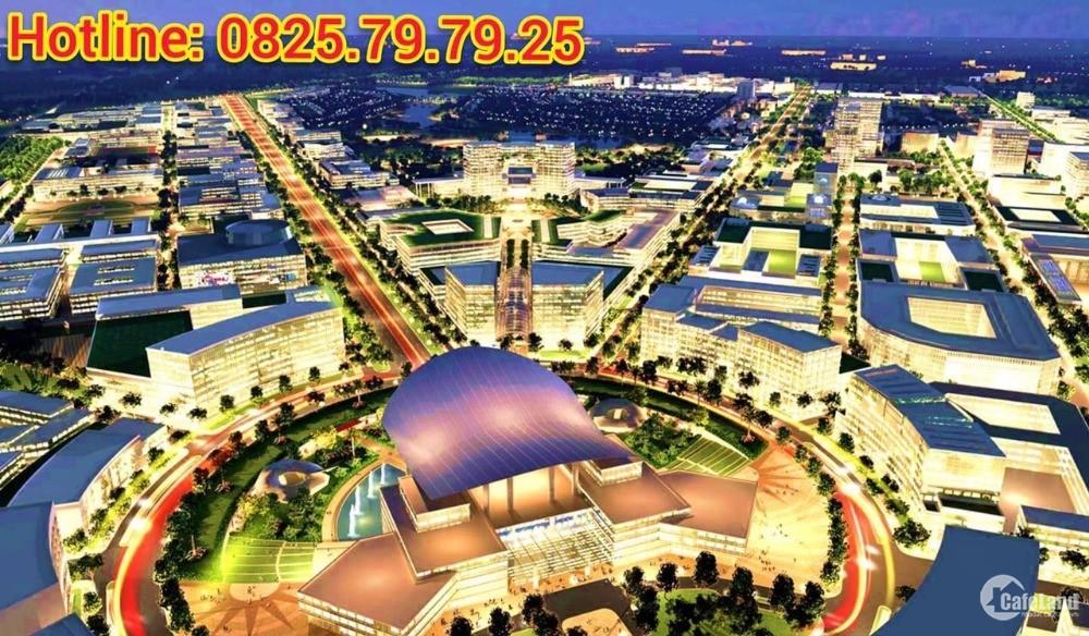 127 lô đẹp nhất Khu Nhà Ở Đại Nam được đem ra đấu giá gây quỹ chống Covid