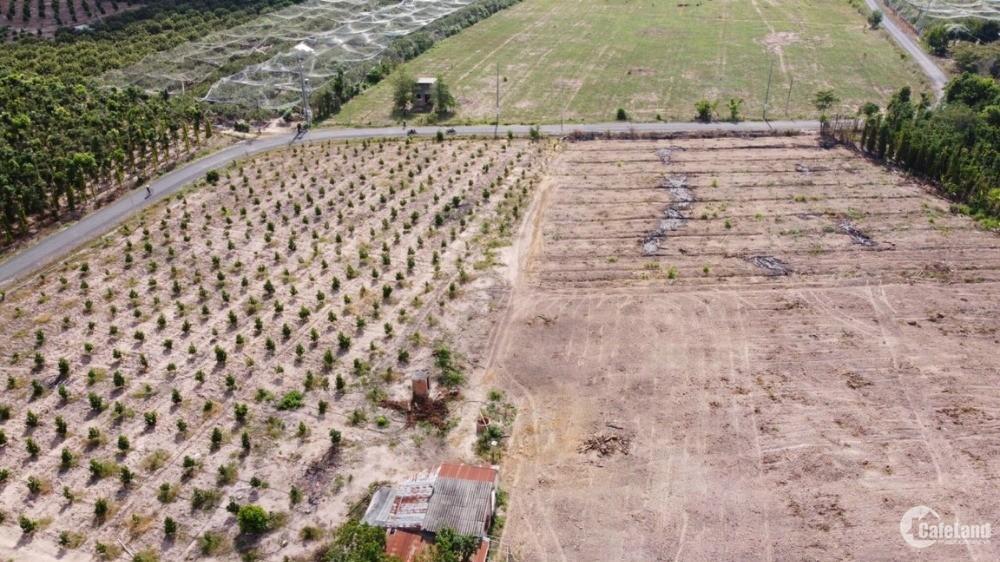 Bán lô đất tại xã Hòa Hiệp, huyện Xuyên Mộc, BR-VT.