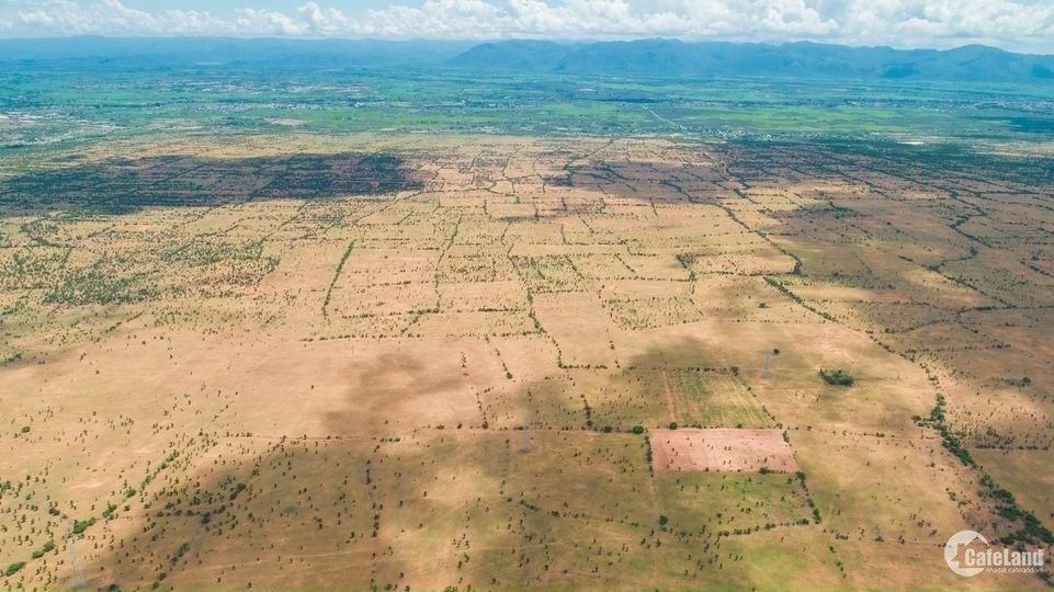 Bán lô đất cây lâu năm, hsd 2063, kdc hiện hữu xung quanh