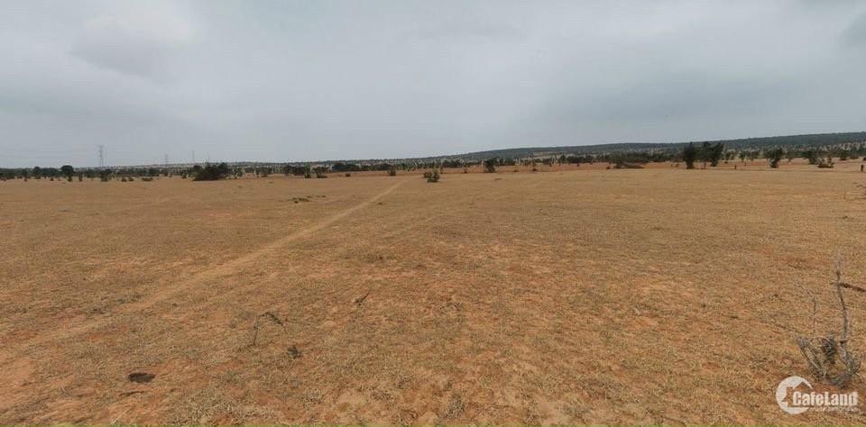 Bán lô đất nhỏ mặt tiền 6m ngay ngã 4 liên huyện - liên xã