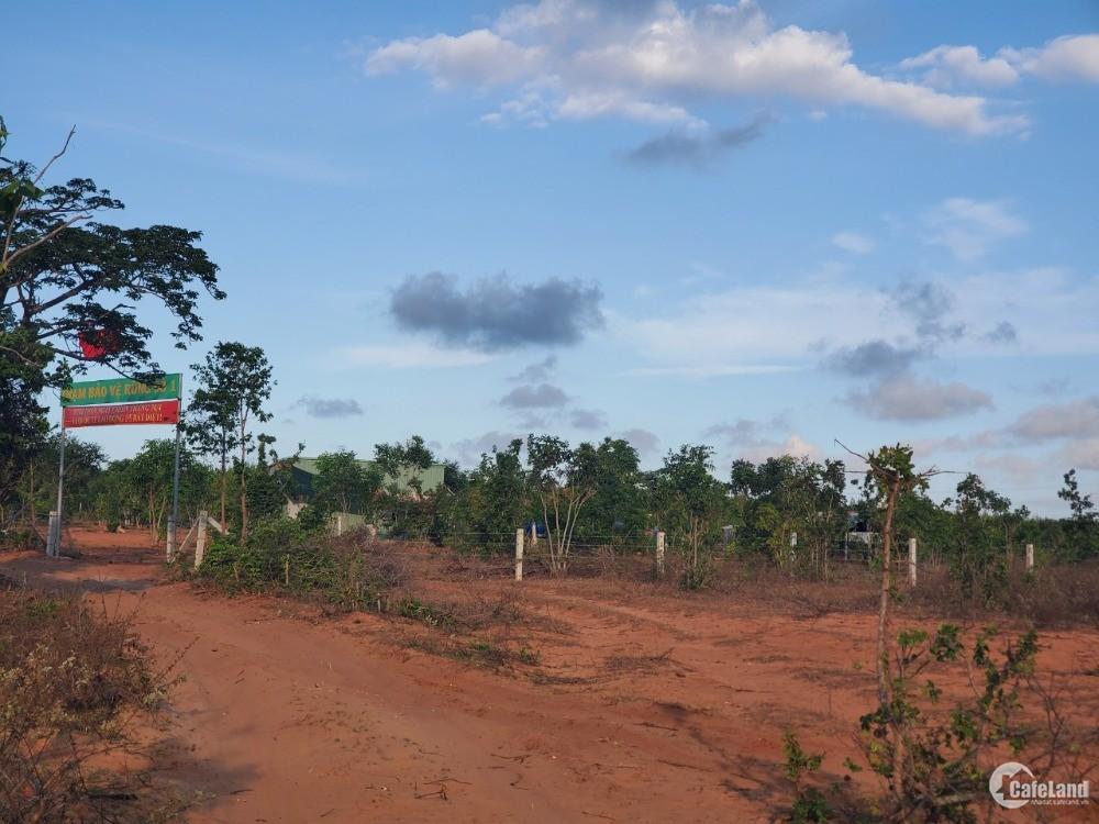 Bán đất nông nghiệp hoà thắng cạnh đường nhựa ĐT 716 và bàu sen Lh 0385230667