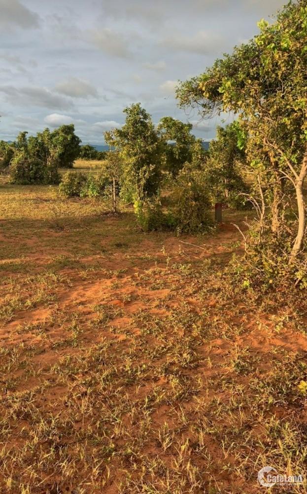 Bán 6396m2 đất vườn phan thanh gần quốc lộ và kênh nước chỉ 671tr Lh 0385230667