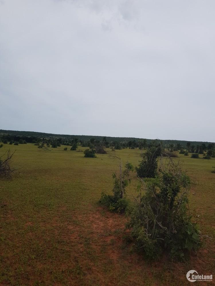 Bán 5143m2 đất vườn hồng thái sát đất dự án rạng đông chỉ 70k/m2 Lh 0385230667