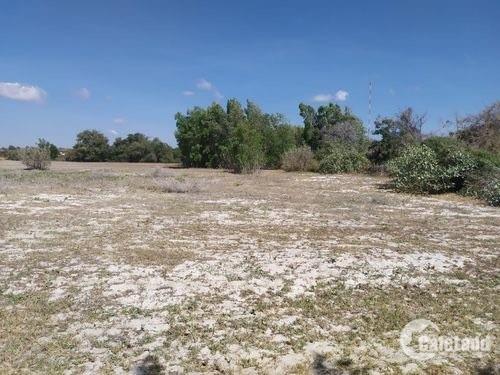 Bán 1.1ha đất đẹp như sân banh - nở hậu - sổ xịn chưa qua đầu tư